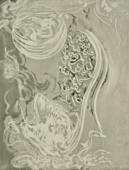 Quale licantropo governa la grande medusa che ingoia annegati, acquaforte, 2015