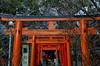Photo:「稲荷参る」 平野神社 - 京都 By