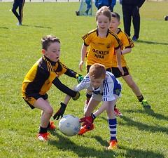 022 Loughmacrory at U8 Football Blitz Apr2016