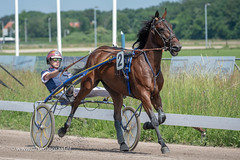 070fotograaf_20180610_ Draverij - 64ste Gouden Zweep_FVDL_Paardensport_8449.jpg