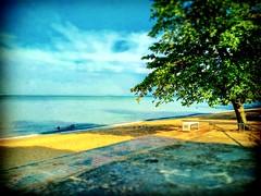 Sungai Baru Tengah, Masjid Tanah, Malacca https://goo.gl/maps/kYjePdXXmqQ2  #travel #holiday #Asian #Malaysia #Malacca #旅行 #度假 #亚洲 #马来西亚 #马六甲  #trip #traveling #beach #海滩 #pantai #วันหยุด #การเดินทาง #ホリデー #휴일 #여행 #праздник #путешествие #ビーチ #바닷가 #ชายหาด