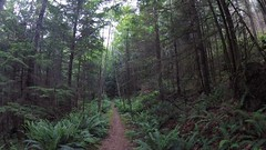 Sunshine Coast Trail