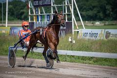 070fotograaf_20180610_ Draverij - 64ste Gouden Zweep_FVDL_Paardensport_8891.jpg
