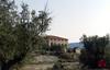 Barranc de Ràgil-Riu Verd-Torroselles – Tibi-4
