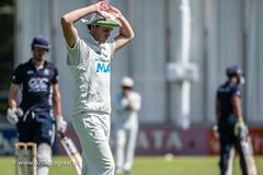 070fotograaf_20180715_Cricket Quick 1 - HCC1_FVDL_Cricket_4603.jpg
