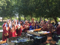 "2018 Grape Blessing Picnic • <a style=""font-size:0.8em;"" href=""http://www.flickr.com/photos/124917635@N08/43156452174/"" target=""_blank"">View on Flickr</a>"