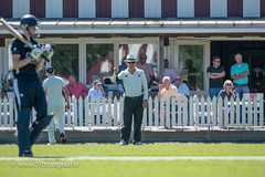070fotograaf_20180715_Cricket Quick 1 - HCC1_FVDL_Cricket_4246.jpg