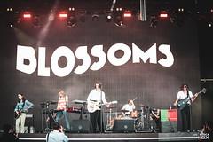 20180713 - Blossoms | NOS Alive'18 @ Passeio Marítimo de Algés