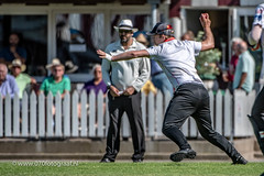 070fotograaf_20180708_Cricket HCC1 - HBS 1_FVDL_Cricket_2664.jpg