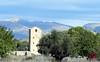 Torres de l'Horta d'Alacant -15