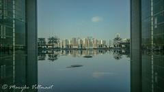 Cityscaping Abu Dhabi 1