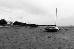 #Arradon en face de la #TourVincent à marée basse #Morbihan #Bretagne