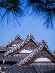 Joukyouji temple #01