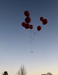 36 birthday baloons 02