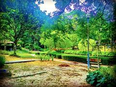 Forest Research Institute Malaysia (FRIM), 68100 Kuala Lumpur, Federal Territory of Kuala Lumpur https://goo.gl/maps/SW9W2sL8BJ32 #大自然 #nature #自然 #طبيعة #자연 #Alam #природа #ธรรมชาติ #kualalumpur #travel #holiday #traveling #trip #Asian #旅行 #度假 #亞洲 #馬來西亞