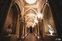 20180910 - Ambiente | Muscarium4 @ Jardim do Palácio de Monserrate