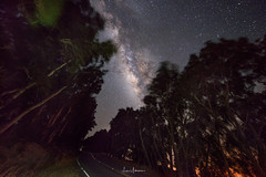 Milky Way Above the Road to Hawi