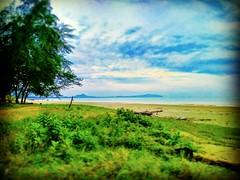Beserah, Kuantan, Pahang https://goo.gl/maps/owctV34jxeR2 #vakantie #reizen #voyage #viaggio #viaje #Semester #Fiesta #Vacanza #Vacances #Plage #Strand #Spiaggia  #Reise #Urlaub #playa  #bomen #albero #Baum #Baum #árbol #Asian #Malaysia #Kuantan #travel #