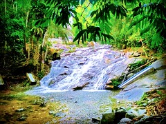 Lata Kinjang Waterfall, Tapah, Perak. North-South Expressway, 35300 Chenderiang, Perak https://goo.gl/maps/pWxhqkYPJ3F2 #travel #holiday #trip #traveling #旅行 #度假 #亞洲 #馬來西亞  #여행 #ホリデー #휴일 #праздник #путешествие #วันหยุด #การเดินทาง​  #瀑布 #น้ำตก​ #водопад