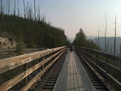 Trestle beim Myra-Trail
