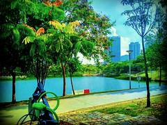 Desa Parkcity, 52200 Kuala Lumpur, Federal Territory of Kuala Lumpur https://goo.gl/maps/xn8i27ZDWn52 #travel #holiday #trip #traveling #旅行 #度假 #亞洲 #Asian #馬來西亞  #여행 #ホリデー #휴일 #праздник #путешествие #วันหยุด #การเดินทาง #park #公園 #パーク #สวนสาธารณะ #парк #공