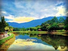 Taman Tasik Taiping, 34000 Taiping, Perak https://goo.gl/maps/GTr7fWn9Pgu #reizen #vakantie #voyage #viaggio #viaje #resa #Semester #Fiesta #Vacanza #Vacances #Reise #Urlaub #sjö #lago #Lac #see #meer #Asia #Malaysia #Taiping #太平湖公园 #travel #holiday #trip