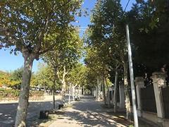 """❤️ @isalvatierra: """"El nou carrer Matas és exemple de respecte i integració amb l'entorn. I ha de servir d'estímul per ser valents i peatonalitzar el centre del poble. Per què no fèiem igual la part de dalt? Una reflexió: el projecte l'ha impulsat i"""