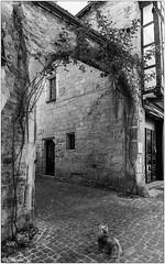 Arche en pierre rue des Halles
