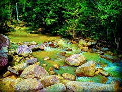 Tanjung Ipoh, Negeri Sembilan https://goo.gl/maps/Qi6Smr2W9VS2 #travel #holiday #traveling #trip #Asian #旅行 #度假 #亞洲 #馬來西亞 #วันหยุด #การเดินทาง #ホリデー #휴일 #여행 #праздник #путешествие #大自然 #nature #河 #River #강 #sungai #川 #река #แม่น้ำ​ #reizen #vakantie #voya