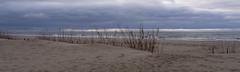 View on Baltic Sea at Yantarny