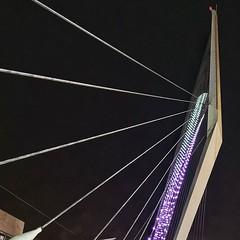 Calatrava Bridge in Jerusalem 2