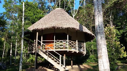 huts in DAS