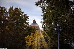 Madrid- 7
