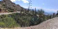 Fahrt in Richtung Ayacucho