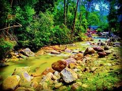 Tanjung Ipoh, Negeri Sembilan https://goo.gl/maps/Qi6Smr2W9VS2 #travel #holiday #traveling #trip #Asian #Malaysia #旅行 #度假 #亞洲 #馬來西亞 #วันหยุด #การเดินทาง #ホリデー #휴일 #여행 #праздник #путешествие #大自然 #nature #河 #River #강 #sungai #川 #река #แม่น้ำ #UluBendul #r