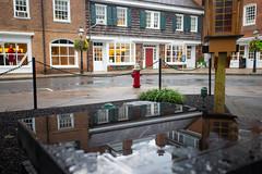 Princeton Rain