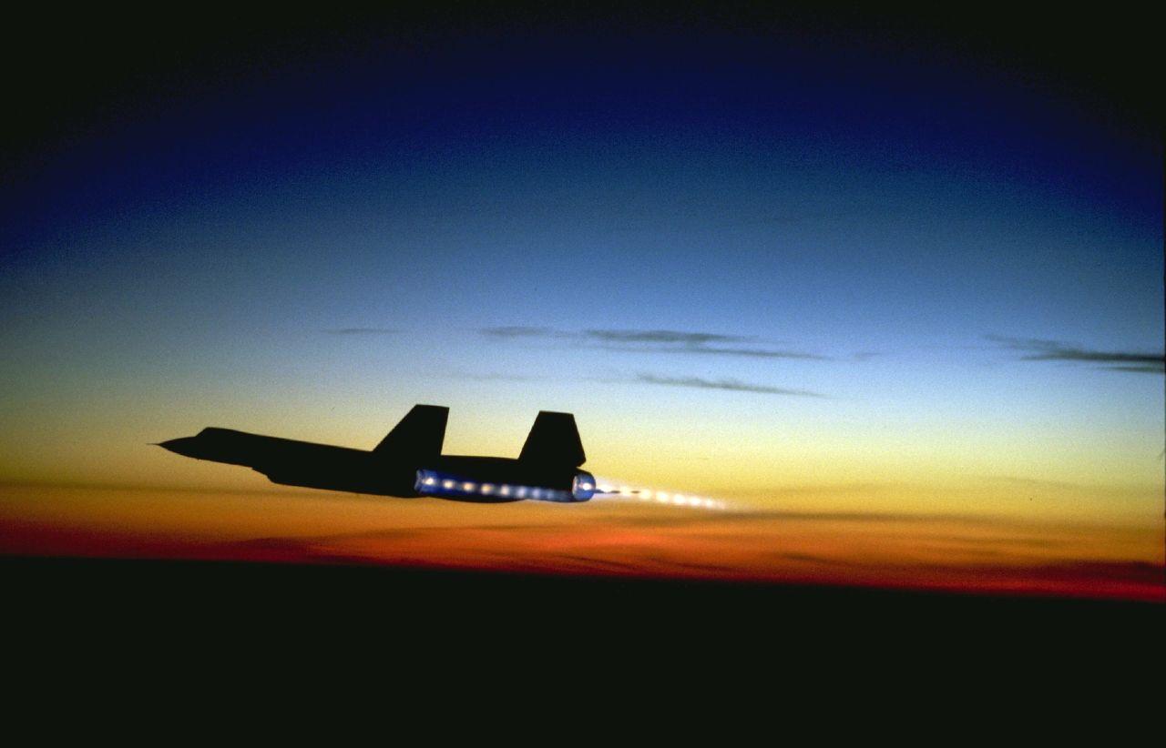 Blackbird Soars through Sunset