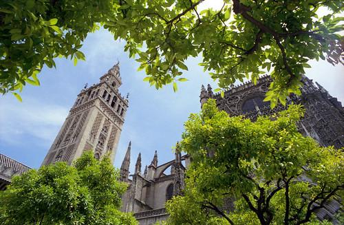219sevilla-catedral.jpg