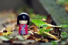 autumn and momoko