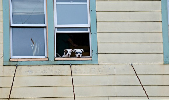 Spectators in Ketchikan