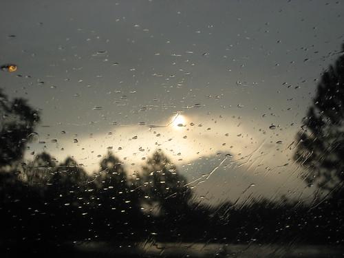 Rainy Morning .. through the window