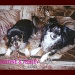 VALENTINA & ASHLEY