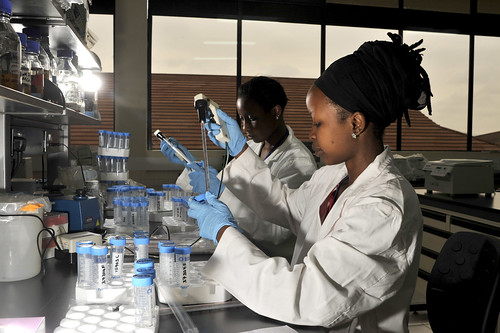 Biosciences eastern and central Africa hub platform