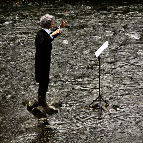 conducting a fish concert