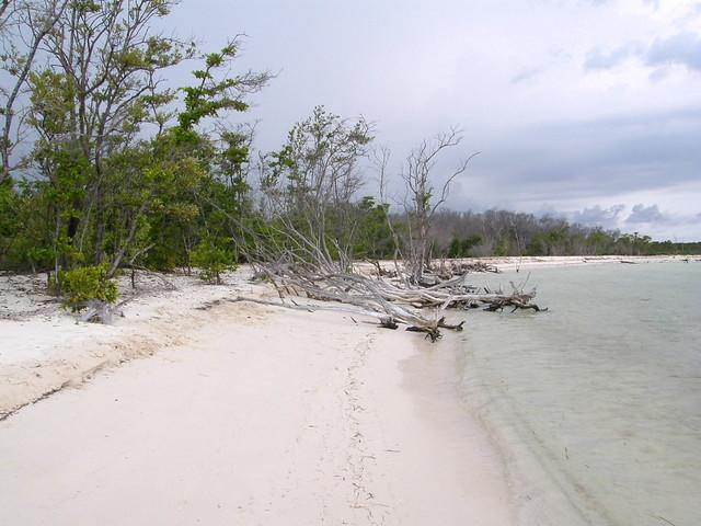 Playa de Cayo Levisa, Pinar del Río