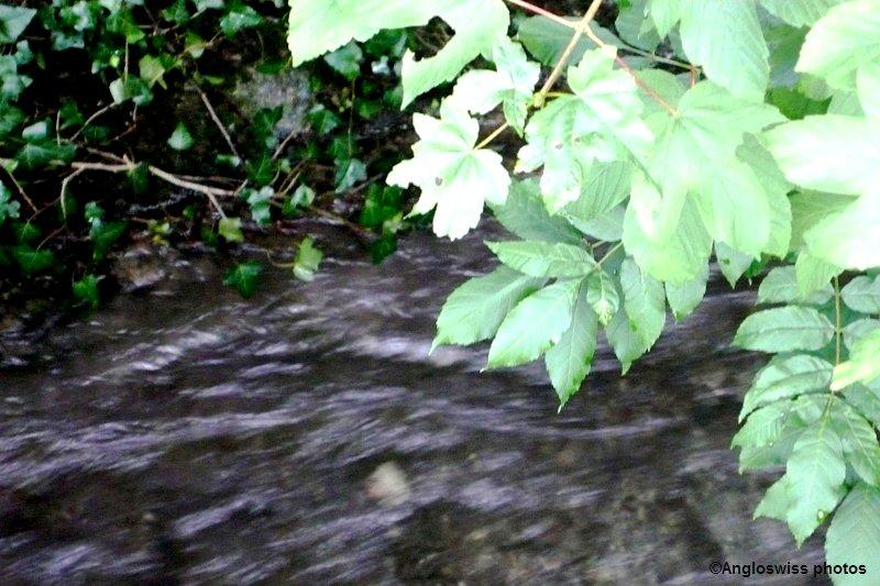 Small stream on the borders of Feldbrunnen-Solothurn