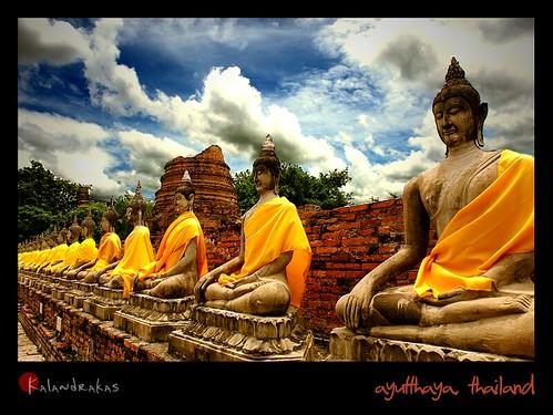 lined buddhas