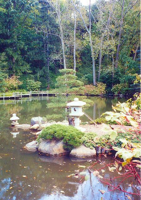 Garden Pond Safety