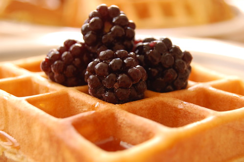 Waffles and blackberries