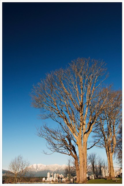 Big Blue Sky (364/365)